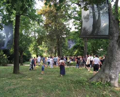 Die Ausstellung »Narrenbäume« mit Fotos von Wilhelm W. Reinke fand sowohl im Deutschen Fotomuseum als auch im Agra-Park statt. Die Eröffnung war im Sommer 2018.